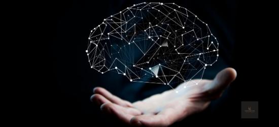 Ki irányít - agy titkai és a technológia | 2